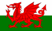 Welsh Flag - We are proud to be located in South Wales
